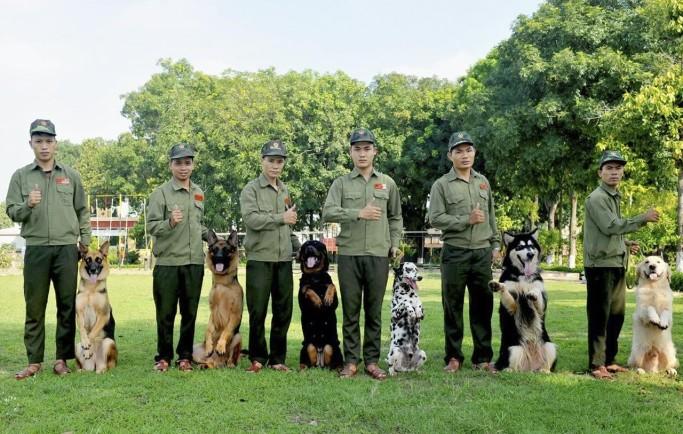 Địa điểm mở dịch vụ trung tâm huấn luyện chó khu vực Hồ Chí Minh