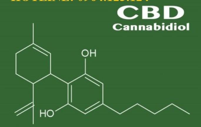 Những lợi ích cho sức khỏe của tinh dầu CBD E-juice mà bạn nên biết