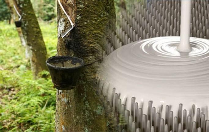 So sánh đệm cao su thiên nhiên và đệm cao su nhân tạo
