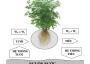 Tìm hiểu về hệ thống ống tưới cho cây trồng